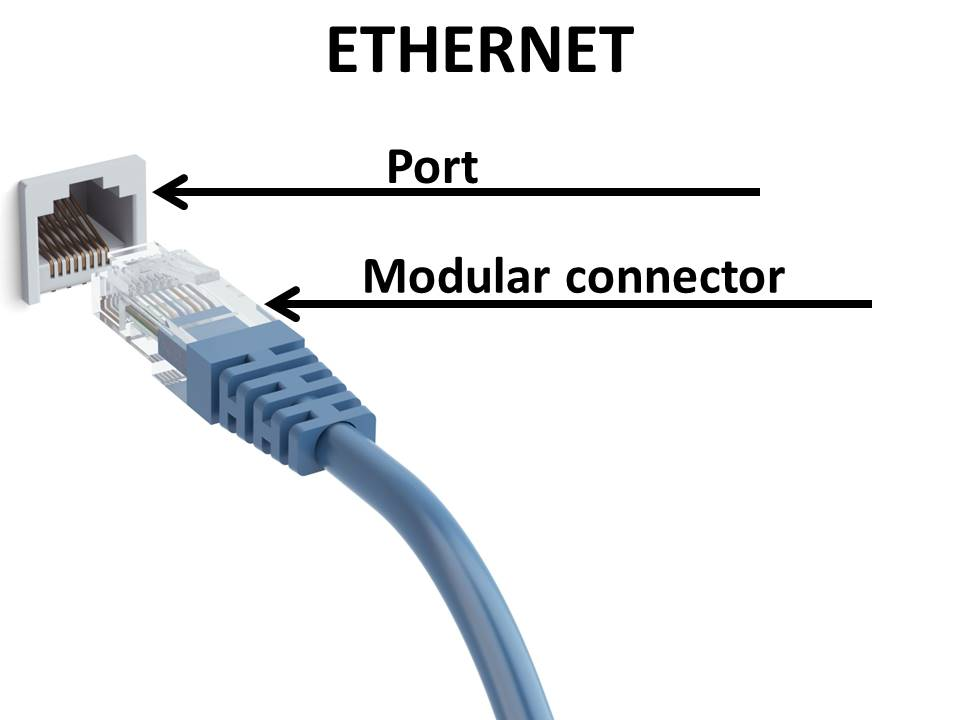 Wifi Password - Example - Ethernet Cable and Ethernet Port - Windows Wally